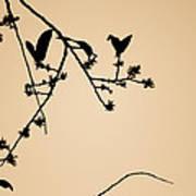 Leaf Birds Poster by Darryl Dalton
