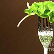 Leaf Of Lettuce On A Fork Poster by Sandra Cunningham