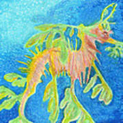 Leafy Seadragon Poster by Tanya Hamell