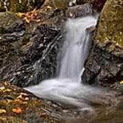 Lepetit Waterfall Poster by Susan Candelario