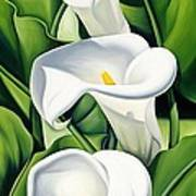 Lilies Poster by Catherine Abel