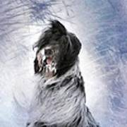 Little Doggie In A Snowstorm Poster by Gun Legler