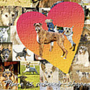 Love Of Boxers Poster by Judy Wood