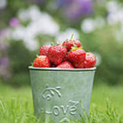 Love Strawberries Poster by Tim Gainey