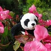 Lovely Pink Flower Poster by Ausra Huntington nee Paulauskaite