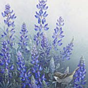 Lupine Poster by Mike Stinnett
