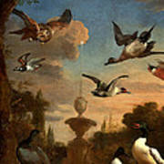 Mallard Golden Eagle Wild Fowl In Flight Poster by Melchior de Hondecoeter