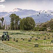 Mancos Colorado Landscape Poster by Janice Rae Pariza