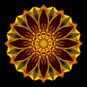 Marigold Flower Mandala Poster by David J Bookbinder