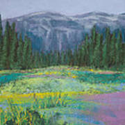 Meadow In The Cascades Poster by David Patterson