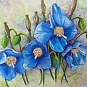 Meconopsis    Himalayan Blue Poppy Poster by Karin  Dawn Kelshall- Best