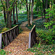 Metroparks Pathway Poster by Frozen in Time Fine Art Photography
