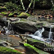 Mini Waterfalls Poster by Kaye Menner
