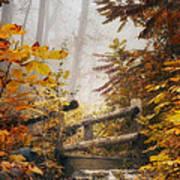 Misty Footbridge Poster by Scott Norris