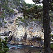Monterey Rock Pines And Cypress Poster by Viktor Savchenko