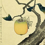 Moon Persimmon And Grasshopper Poster by Katsushika Hokusai