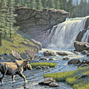 Moose Falls Poster by Paul Krapf