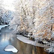 Morning Light Fresh Snowfall Gauley River Poster by Thomas R Fletcher