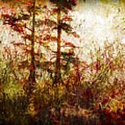 Morning Sunrise Burst Of Color Poster by J Larry Walker