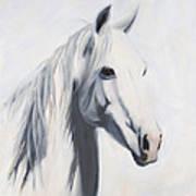 Mustang Mama Poster by Jack Atkins