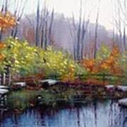 Nature Center Pond At Warner Park In Autumn Poster by Janet King