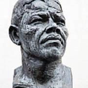Nelson Mandela Statue Poster by Jane Rix