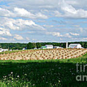 Ohio Amish Farm Poster by Lila Fisher-Wenzel