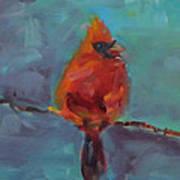 Oklahoma Cardinal Poster by Susie Jernigan