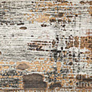 Old Painted Wood Abstract No.1 Poster by Elena Elisseeva