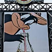Orioles Mascot Drinks Coca Cola Poster by Susan Candelario