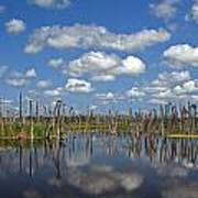 Orlando Wetlands Cloudscape 3 Poster by Mike Reid
