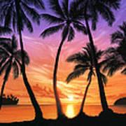 Palm Beach Sundown Poster by Andrew Farley