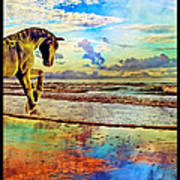 Paradise Sunset Poster by Betsy Knapp