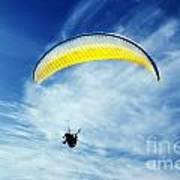 Paraglider Poster by Jelena Jovanovic