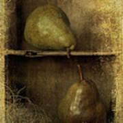 Pears Poster by Priska Wettstein