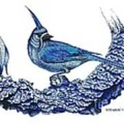 Pen And Ink Drawing Of Small Blue Bird  Poster by Mario Perez
