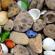 Petoskey Stones Lll Poster by Michelle Calkins
