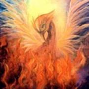 Phoenix Rising Poster by Marina Petro