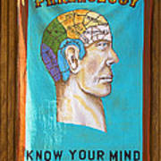 Phrenology Poster by Garry Gay