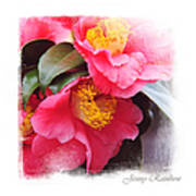 Pink Camellia. Elegant Knickknacks Poster by Jenny Rainbow