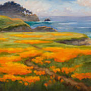 Point Lobos Poppies Poster by Karin  Leonard