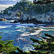 Point Lobos Poster by Ron White