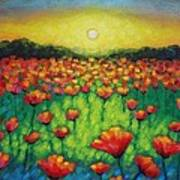 Poppies At Twilight Poster by John  Nolan