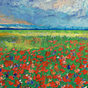 Poppy Field Poster by Michael Creese