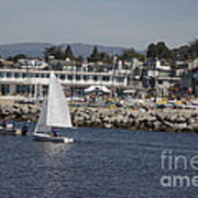 pr 193 - The Sailboat Poster by Chris Berry