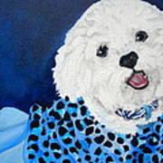 Pretty In Blue Poster by Debi Starr