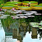 Prince Charmings Lily Pond Poster by Frozen in Time Fine Art Photography