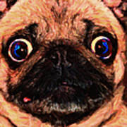 Pug Dog - Painterly Poster by Wingsdomain Art and Photography