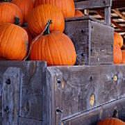 Pumpkins On The Wagon Poster by Kerri Mortenson