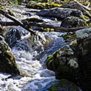 Pure Mountain Stream Poster by Bill Cannon